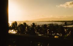 Ship on the Horizon (kodakthrowbacks) Tags: hawaii kodachrome ship ocean palm trees 35mm found slide transparency kodak