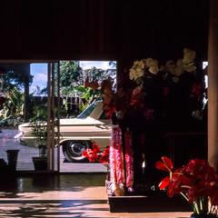 Untitled (kodakthrowbacks) Tags: hawaii vintage car cars 1962 1960s film community slide kodachrome nostalgic kodak