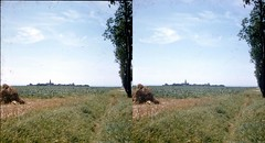 Batch E 0115 (dizzygum) Tags: vintage stereo 3d slide image france 1960 french countryside