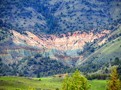 Rainbow Strata (Dru!) Tags: oregon rainbow strata tertiary sedimentary volcanic exposed geology or usa johnday sheeprock