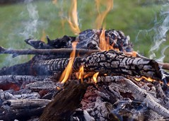 Burning (matttimmons1) Tags: color wood flame fire contrast nature camp warmth heat catalyst smoke