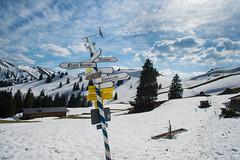 Schilderwald (Pixelkids) Tags: schilder berge bergewelt tegernsee mangfallgebirge bayerischevoralpen schnee bayern