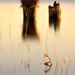 Sonnenuntergang am Cämmerer See