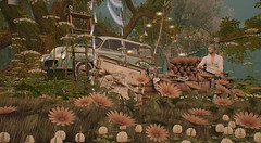 Hallelujah You're home (Bisou @ The Outer Garden) Tags: deco virtual virtualworld {anc} ss 3ⅾ 2019 secondlife flower anc sl avatar open セカンドライフ inworld アバター ladder landscape secondlife