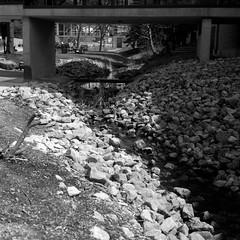 CatLABS X Film 80 - A First Look (Alex Luyckx) Tags: oakville ontario canada sheridancollege trafalgarroadcampus sheridan college school campus institution institute frankeheidecke rolleiflex rolleiflex28f tlr 120 mediumformat square 6x6 carlzeissplanar80mm128 catlabsofjp catlabs catlabsxfilm80 xfilm80 asa80 kodak d76 kodakd76 stock 10 epsonv700 adobephotoshopcc bw blackwhite film filmphotography believeinfilm filmisalive filmisnotdead