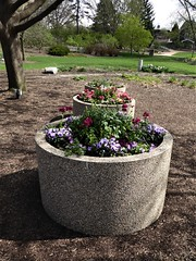 Lombard, IL, Lilacia Park, Flower Planter Trio (Mary Warren 13.6+ Million Views) Tags: lombardil lilaciapark garden park spring nature flora plants blooms blossoms flowers planters