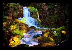 Mistery river... (bafdias) Tags: river canonnfd50mmf14 fujifilmxpro2