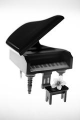 still-life 24-04-2019 004 (swissnature3) Tags: stilllife macro light flower piano toy