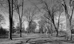 Allee and the Mansion (Jim Frazier) Tags: jfpblog facebook 3d3layer 2019 2019cantigny 20190327cantigny 20190327cantignyphasetwoiscoming allee alleesouthofmansion bw beautiful beauty blackandwhite bluesky botanicgarden botanicalgarden cantigny cantignypark centered centralperspective desaturated dupage earlyspring estates framing gardens graceful headon historic homes horticulture houses il illinois jimfraziercom landscape lawn leadinglines linedup lines luxury mansions march mccormickhouse mccormickmansion monochrome museum nature parks pergola perpendicular preserve q4 residence residential rich robertrmccormick robertrmccormickmuseum scenery scenic spring sunny symmetrical symmetry trees vanishingpoint wealth wheaton winter gardenblog