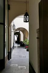 Backlight (Jocawe) Tags: lumixdmclx100 availablelight backlight beige brown black grey green court