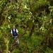 Luis Zavala, presidente de la comunidad de Kiuñalla, Apurímac, en una parcela de monitoreo de restauración en un bosque nuboso.
