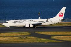 Japan Airlines Boeing 737-846 JA335J (Mark Harris photography) Tags: spotting plane haneda japan boeing 737 jal