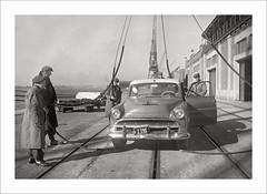 Vehicle Collection (9358) - Hudson (Steve Given) Tags: familycar motorvehicle automobile hudson 1950s