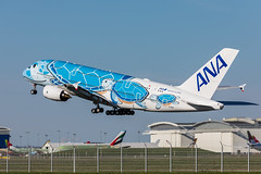 All Nippon Airways A380 (Rami Khanna-Prade) Tags: anacouchii couchii lani hawaii turtle flyana ana ja381a allnipponairways 全日本空輸 bairbus380 全日空 flyinghonu planespotting anaa380 aviation airbuslovers aviationlovers japan a388 a380 ホヌ初号機 エアバス フライングホヌ avgeek