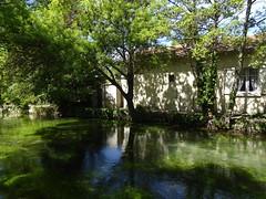 dalla Venezia campagnola (fotomie2009) Tags: francia lislesurlasorgue france landscape paesaggio water canal canale acqua provence provenza trees alberi reflection riflessi shadows