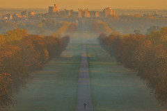 Fredda mattina / Cold morning (Windsor, Berkshire, United Kingdom) (AndreaPucci) Tags: windsor uk berkshire sunrise autumn fog andreapucci longwalk greatpark