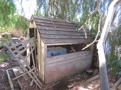 Former cubby house from Greenock Centenary Park repurposed as a chicken coop (RS 1990) Tags: former greenock centenarypark cubbyhouse wooden adelaide australia southaustralia chickencoop repurposed thursday 25th april 2019
