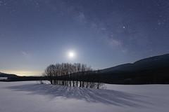 3225 (Keiichi T) Tags: 夜景 空 天の川 milkyway tree 6d 木 mountain 月明かり winter night 山 shadow eos 光 canon 日本 影 snow 冬 雪 星 star 月 夜空 moon japan moonlight light sky 夜