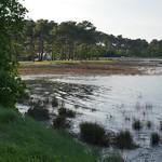 Marée haute et fort coefficient de 107, Jane de Boy, presqu'île du Cap Ferret, Bassin d'Arcachon, Gironde, Aquitaine, France. thumbnail