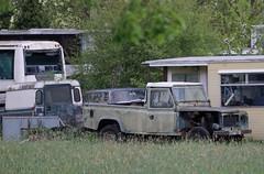 A477 SAV (Nivek.Old.Gold) Tags: 1984 land rover 110 pickup 2495cc diesel