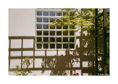 (Daiku_San) Tags: film ishootfilm 35mmfilm colorfilm rangefindercamera expiredfilm usetheforce leicam2 jupiter123528 mitsubishimxii100 epsonv750mpro