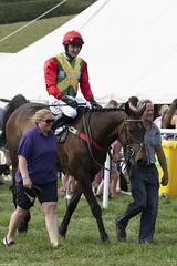 DSC_0809 (michael_walton1) Tags: nikon d500 sigma 150600c 55300 eytononsevern horse horseracing horses pointtopoint p2p