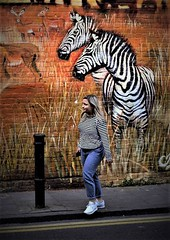 camoulflaged (alexi278) Tags: street stripes zebras mural graffiti urban stepping person animals