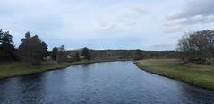 River Spey, Cromdale, Feb 2019 (allanmaciver) Tags: river cromdale bridge late afternoon speyside scotland fishing wide curve trees allanmaciver spey