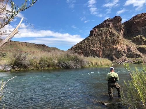 Trout fishing on the Owyhee