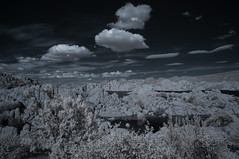 Overlooking Watson Lake- Infrared (Bill Gracey 23 Million Views) Tags: watsonlake arizona infrared infraredphotography convertedinfraredcamera ir water clouds sky highcontrast channelswapping reflections