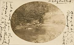 Scene in Rock Creek Park (1904) (StreetsofWashington) Tags: rockcreekpark postcards washington washingtondc