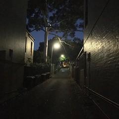 Light and shadow play on lanes at dusk in Glebe, Sydney - #lightandshadowplayonlanes #light #shadow #lane #Sydney #Glebe #urbanstreet #urbanfragments #urbanandstreet #streetphotography #trees #streetlight #dusk (TenguTech) Tags: ifttt instagram lightandshadowplayonlanes light shadow lane sydney glebe urbanstreet urbanfragments urbanandstreet streetphotography trees streetlight night dusk