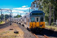 The Replacement (southernspiritnr84) Tags: passenger silver set emu sset sydneytrains s113 railway s100 train regentspark nsw australia
