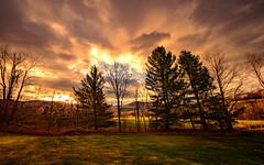 When Autumn Meets Spring (Nicholas Erwin) Tags: hdr landscape sunrise spring autumn nature naturephotography outside morning sun trees outdoors fujifilmxt2 fujixt2 xf1024mmf4rois xf1024 fuji1024 waterbury vermont vt unitedstatesofamerica usa america fav10 fav25