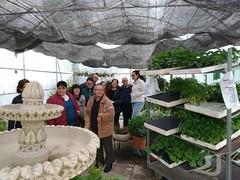Visita-Centro-Ocupacional-Albasur-Asociacion-San-Jose-190425-0066 (Asociación San José - Guadix) Tags: albasur centro ocupacional manipulados asociación san josé guadix abril 2019