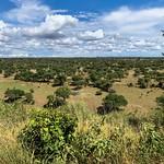 Tanzania thumbnail