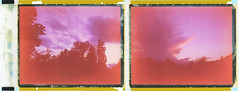 Summer Skies 2017 Diptych (sycamoretrees) Tags: 690 690200409 analog automatic100 backwardspeeled clouds diptych expired expired2004 film instantfilm landcamera marianrainerharbach model100 packfilm polaroid sky sunset type100