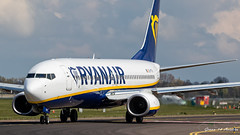 Ryanair B737 (Ramon Kok) Tags: 737 737800 ams avgeek avporn aircraft airline airlines airplane airport airways amsterdam amsterdamairportschiphol aviation b737 b738 boeing boeing737 boeing737800 eham eifth fr holland ryr ryanair schiphol schipholairport thenetherlands lijnden noordholland nederland