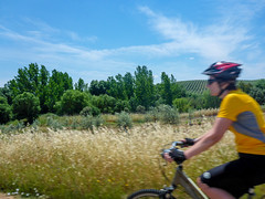 Margo Riding (ex_magician) Tags: portugal portugaltrip may 2017 moik photo photos picture pictures image lightroom adobe adobelightroom interesting europe bicycling biketour portugalbestcycling turaventur castlesandwine vanguided