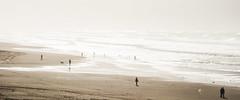 Beach Days (AAcerbo) Tags: oceanbeach sanfrancisco california beach outdoors