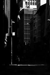 9580 (*Ολύμπιος*) Tags: sãopaulo street streetphotography streetlife streetphoto rua cidade city città cittè ciudad ciutat centro centrodowntown centrohistórico fotoderua foto gente girl garota giovanni girls garotas people persone persons pessoas pb pretoebranco bw biancoenero bn blackandwhite noiretblanc blackwhite