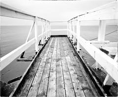 Ocean is Where I Belong (Steve Lundqvist) Tags: pier ocean sea mare oceano perspective outdoor fishing pesca adriatic adriatico water acqua landscape panorama sky passerella catwalk
