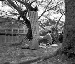 (anchor recess) Tags: makina670 フィルム film wakayama 和歌山