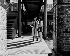 saturday's shadows (gro57074@bigpond.net.au) Tags: saturday'sshadows women f28 2470mmf28 tamron d850 nikon shadows people candid monochromatic monotone monochrome mono bw blackwhite guyclift sydney 2019 april paddingtonreservoirgardens paddington