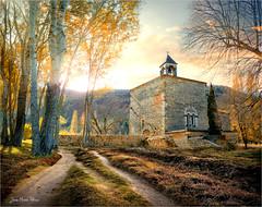 Golden hour (Jean-Michel Priaux) Tags: provence france paysage nature forest sun sunset sunlight chapel chapelle chapell patrimony patrimoine rock rocks light goldenhour colors priaux