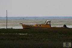 Lège-Cap-Ferret : Le Four (damzed) Tags: pentaxk3 sigma70300apo aquitaine nouvelleaquitaine gironde lègecapferret lefour bateau bassindarcachon