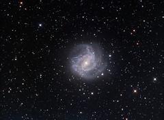 M83 galaxy (whale05) Tags: southern pinwheel galaxy stars science