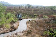Dyfi Osprey Project (the_amanda) Tags: wales dyfi osprey project boardwalk bench montgomeryshire wildlife trust cors nature reserve wetlands machynlleth