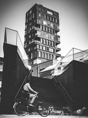 which way? (bentruetschler) Tags: streetphotography streetfotografie hamburg blackandwhite bw hafencity bicycle dove contrast stairs bensnaps olympus omdem5ii 25mm