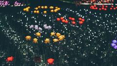 板橋蝴蝶公園 (aelx911) Tags: a7rii a7r2 sony fe85 fe85f18 landscape cityscape city taiwan taipei park night light 台灣 台北 板橋 蝴蝶公園